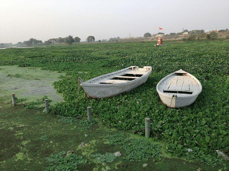 नमामि गंगे -मुक्त बाजार में समग्र-गंगा की बातः दिषा एवं विकल्पवह गंगा जो भारत कीसभ्यताको हजारों