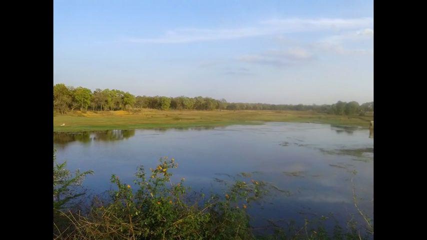 एक ऐसी नदी जो अपने स्वच्छ जल के कारण कभी कांच के सामान पारदर्शी हुआ करती थी. जिसका जीवनदायिनी जल रोग