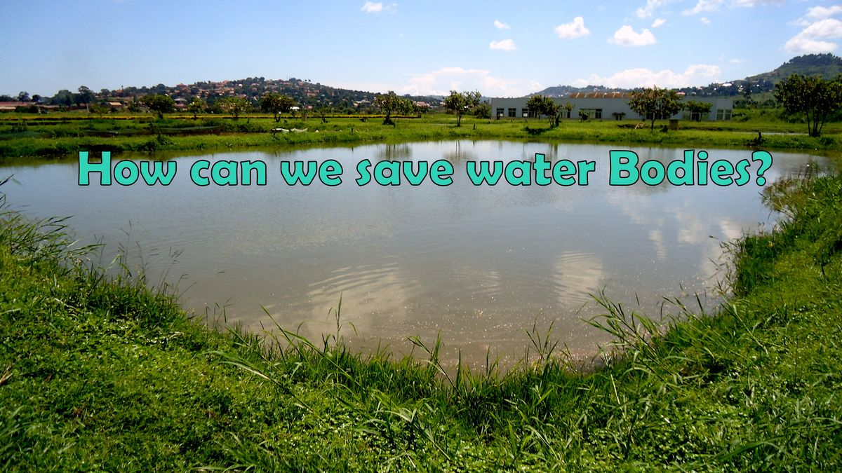 How to Save the Water bodies?Following these steps in chronological order:·  1)Identify our water