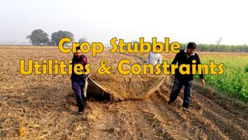 Crop Stubble or Paddy Straw - Utilities and Constraints