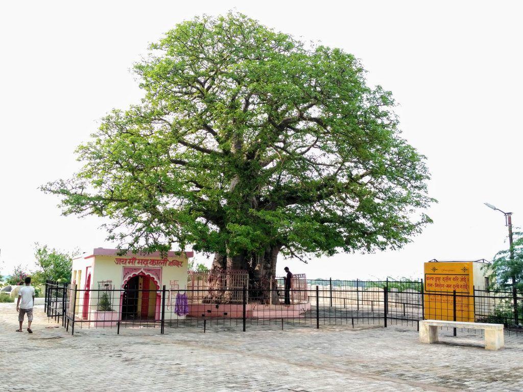 यमुना व बेतवा नदी के संगम पर बसा हमीरपुर उत्तर- प्रदेश का महत्वपूर्ण जिला है. इसे जिले को लाल रेत की