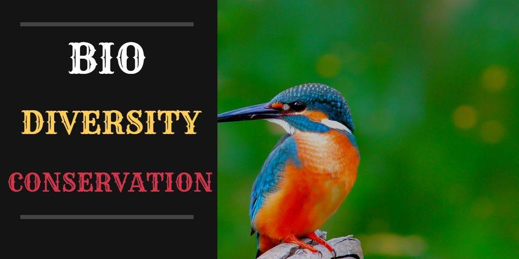जैव विविधता संरक्षण के प्रति जागरूक हो समाज, रोकनी होंगी पर्यावरण विरोधी गतिविधियां-