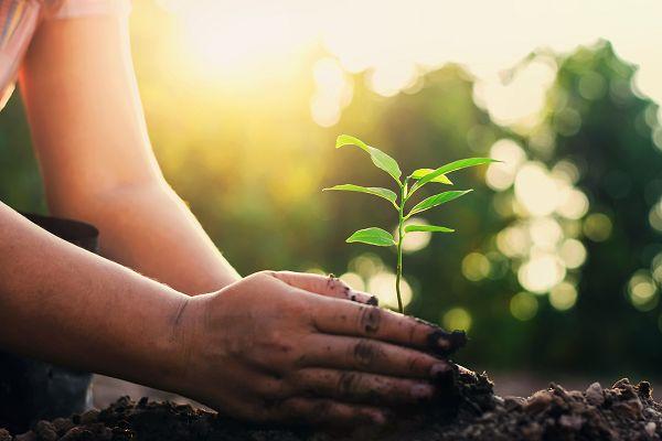 विश्व प्रकृति संरक्षण दिवस विशेष – हर पल हो रहे बदलावों से सीख लें और प्रकृति को महसूस कराएं आल इज़ व