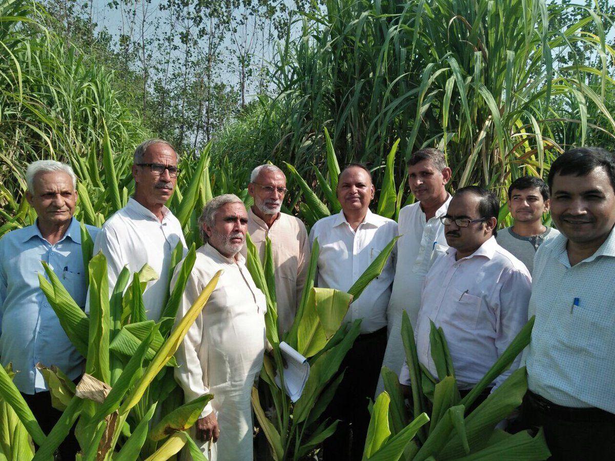 नाम - भारत भूषण त्यागीपद - प्रगतिशील किसान, मिश्रित एवं जैविक कृषि विशेषज्ञ (बुलंदशहर)नवप्रवर्तक को