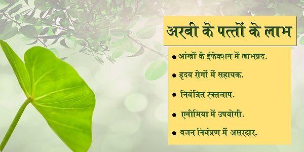 अगस्त स्वास्थ्य विशेषांक – रिमझिम बरसते सावन में पाएं रोगों से आज़ादी-