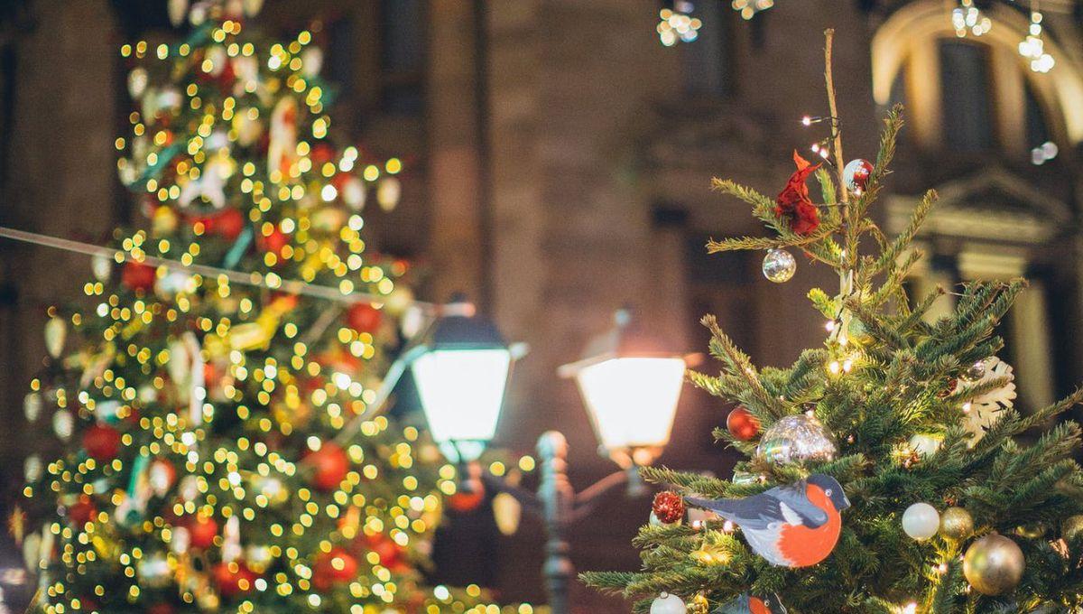 शिव प्रताप सिंह पवार -मैरी क्रिसमस  क्रिसमस डे  मानवता की रक्षा के लिए अपना सर्वस्व न्यौछावर कर देने